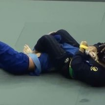 2014 IBJJF Chicago Summer Open